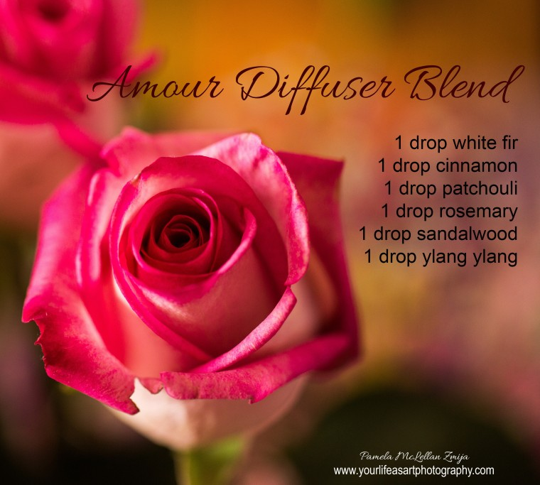 PMZ-Amour Diffuser Blend.jpg