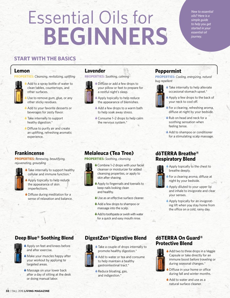 EO For Beginners - Page 1 - Living+Magazine+Fall+2016-17 copy.jpg