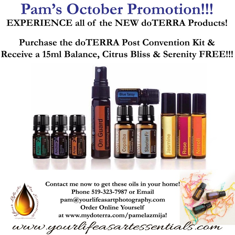 Convention Kit Promo October