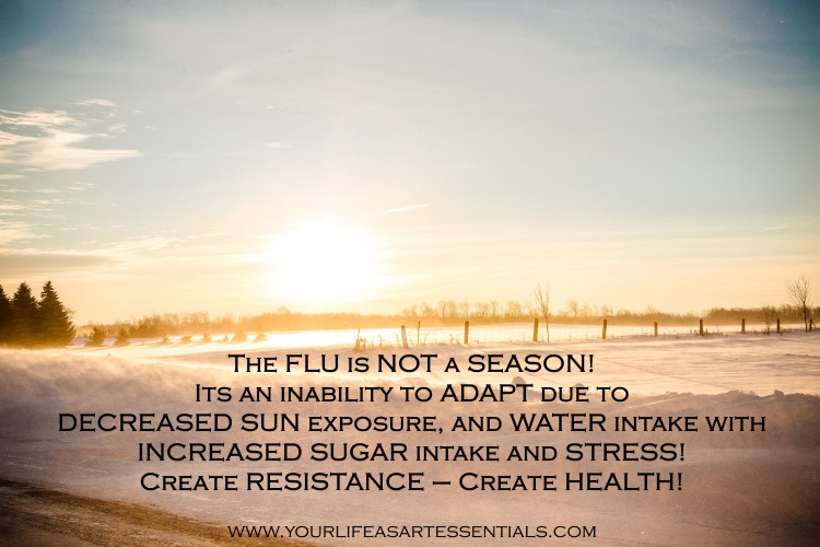The Flu Is Not A Season - 2014 January Winter.jpg