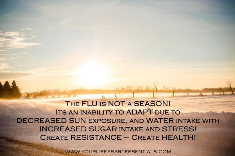 The Flu Is Not A Season - 2014 January Winter.jpg
