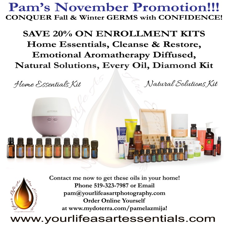 HOME ESSENTIALS PROMO - NOVEMBER 2017