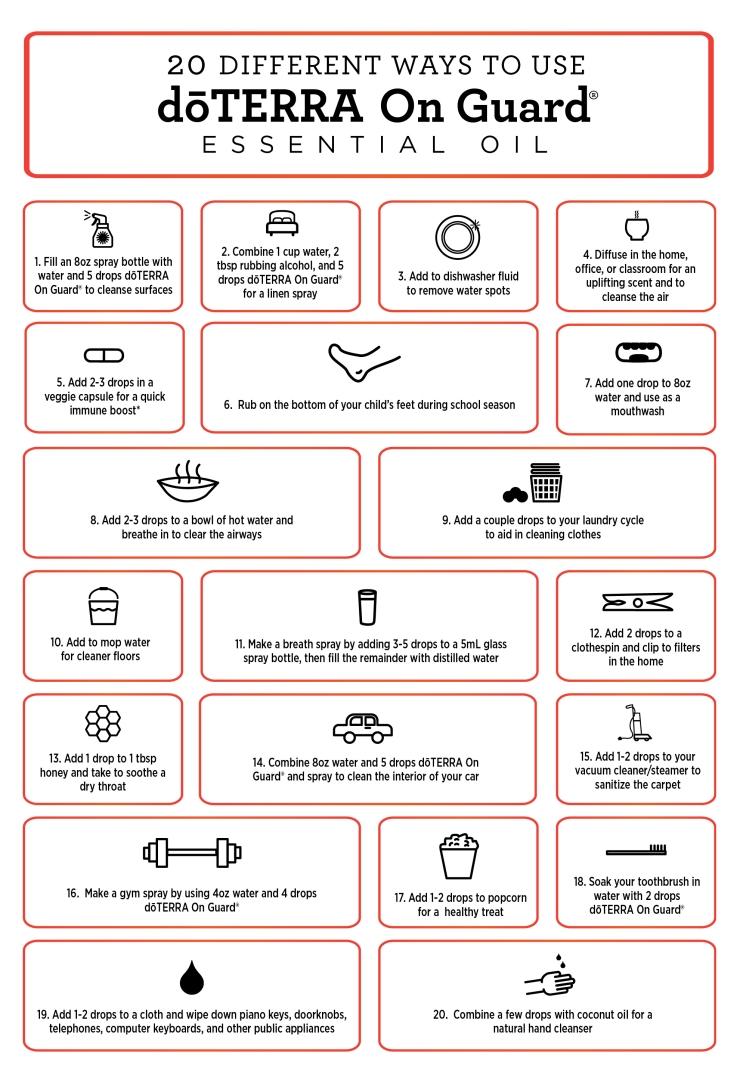 20 Ways to use OnGuard.jpg